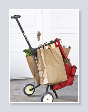 De1d6fb8b54143a58cdd8a22d9eeab40 furthermore Tool Service Carts Pull Trolly Utility Handtrucks besides 217650594464132511 as well Personal Shopping Cart Super as well 16227. on fold up carts for groceries